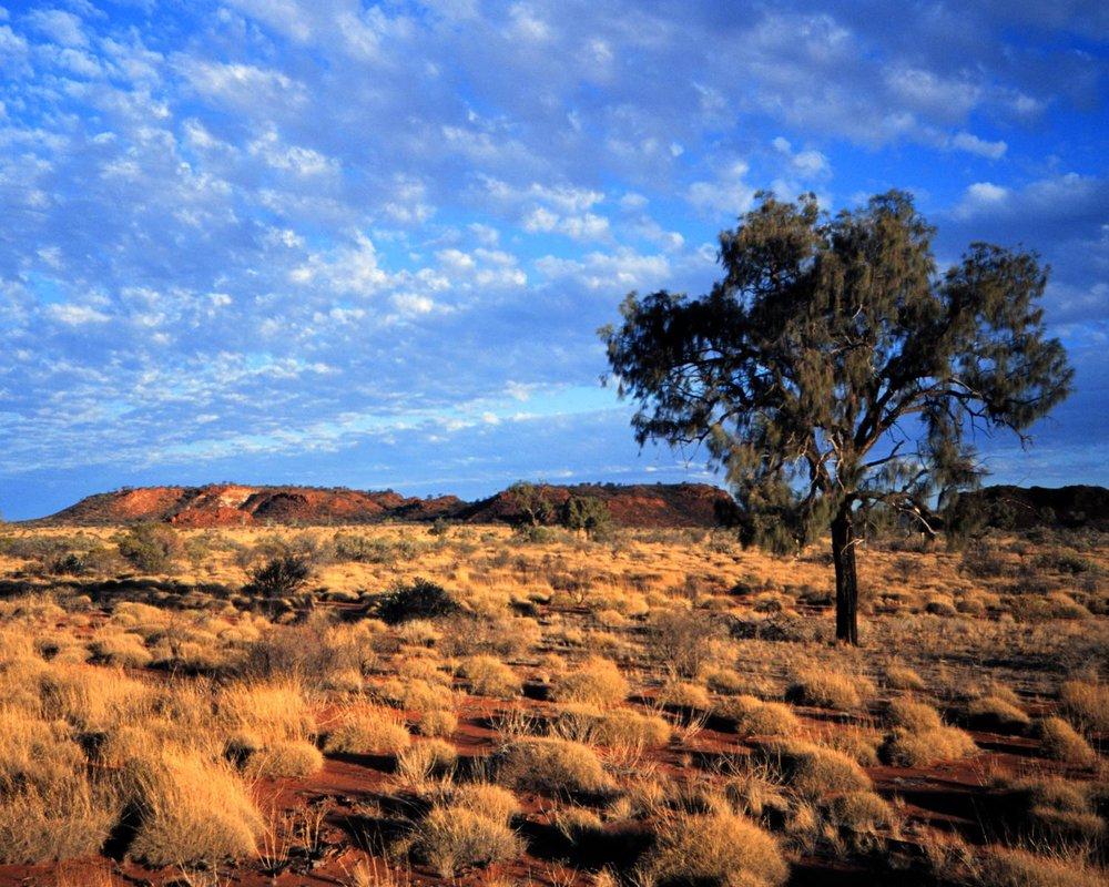 Australia 8.jpg