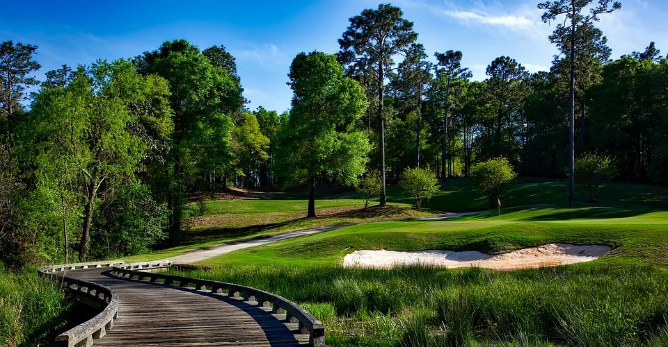 magnolia-golf-course-1613270_960_720.jpg