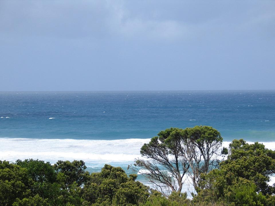 beach-1000487_960_720.jpg