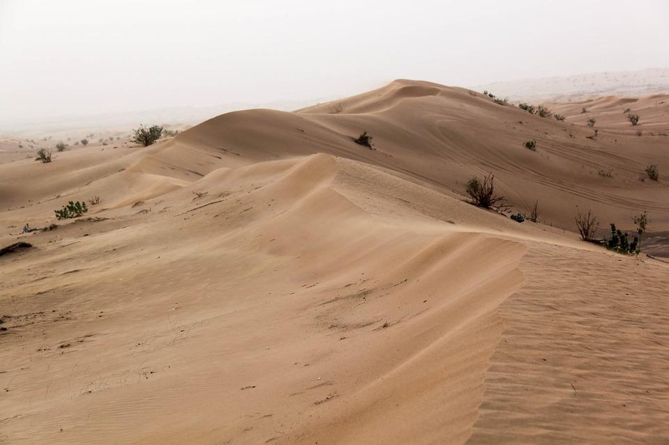 desert-689561_960_720.jpg