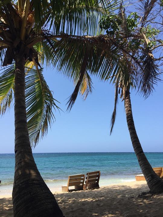 beach-914806_960_720.jpg