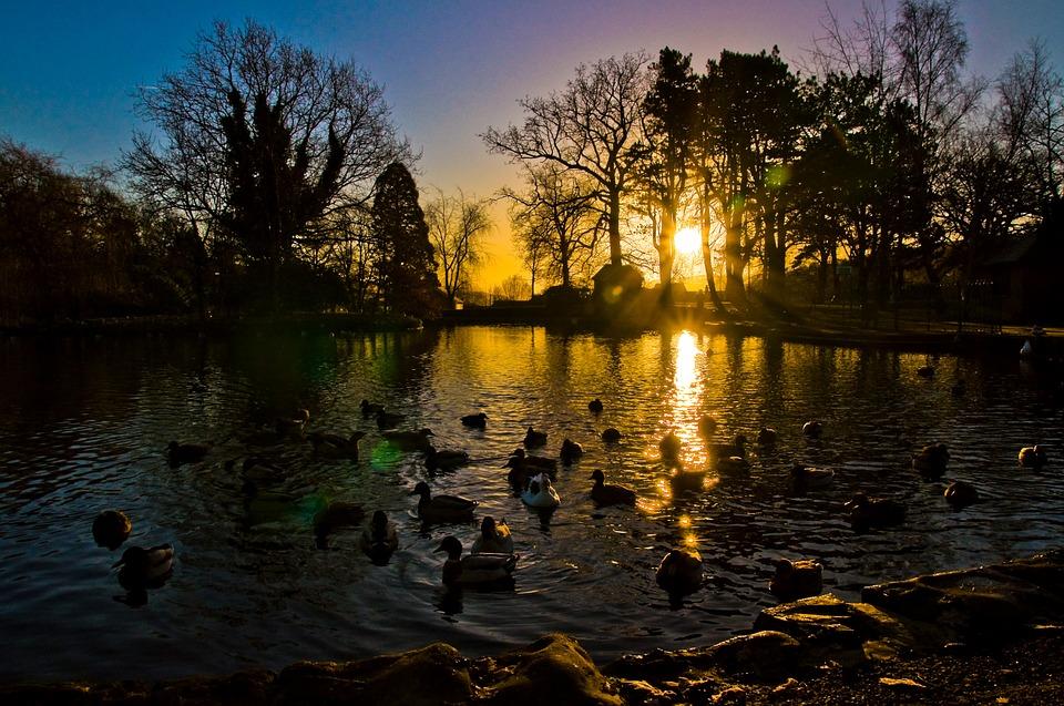 sunrise-612189_960_720.jpg