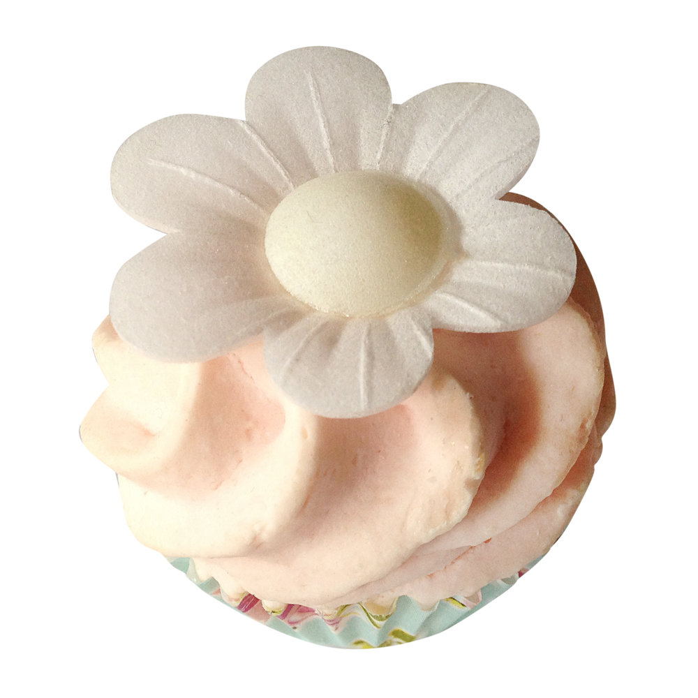 bath cupcake fizzy.JPG
