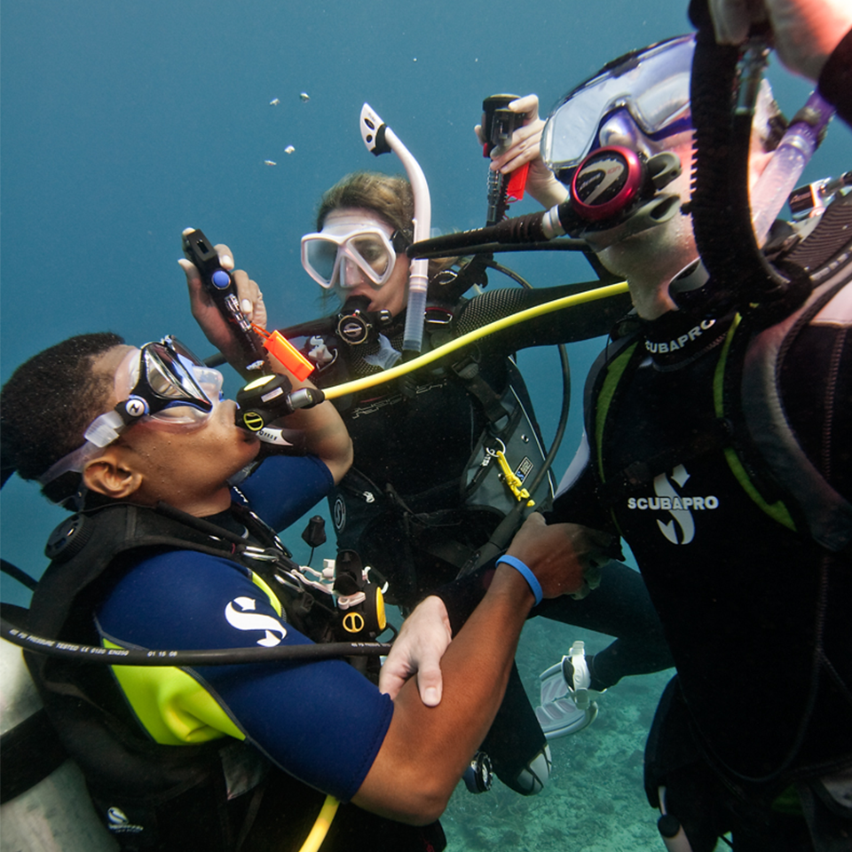 Coral key scuba and travel specialty training xflitez Choice Image