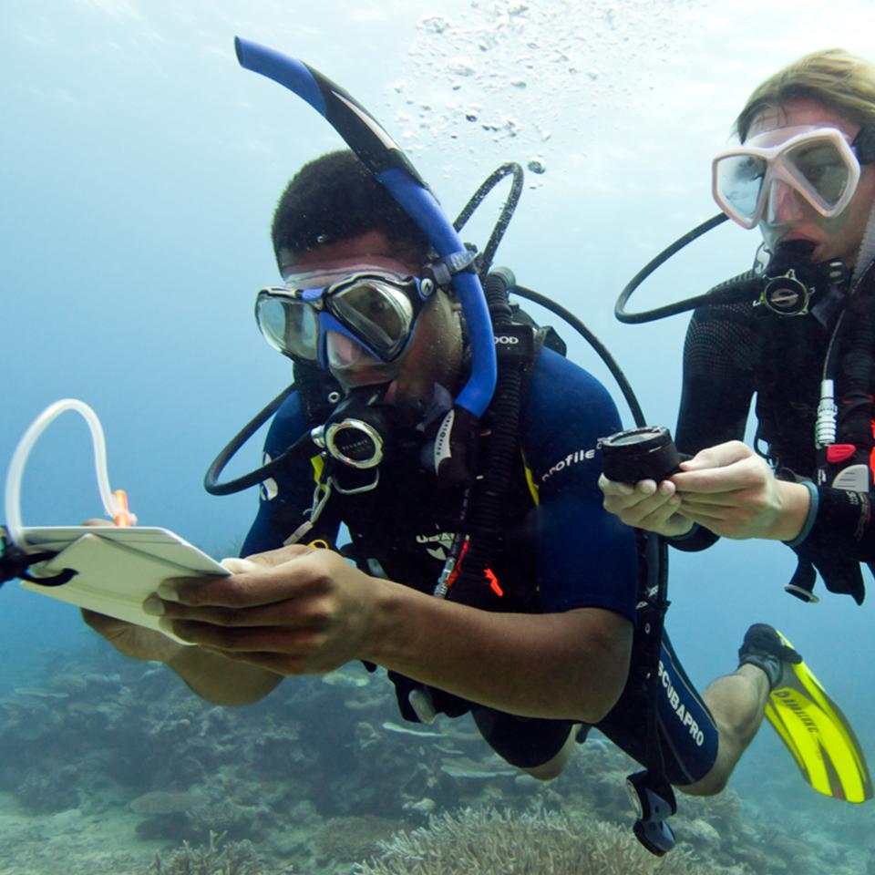 Scuba training coral key scuba and travel padi master scuba diver xflitez Choice Image