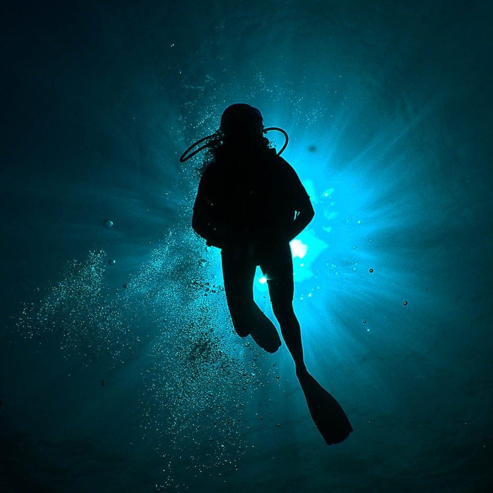 indigo-blue-silhouettes-slideshow-9.jpg