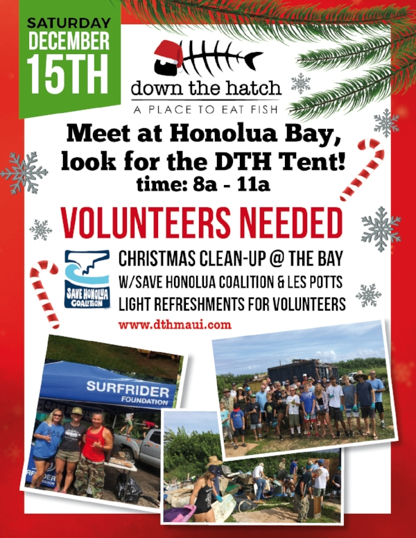 11-28 CHRISTMAS CLEAN UP FLYER 2 8,5X11.jpg