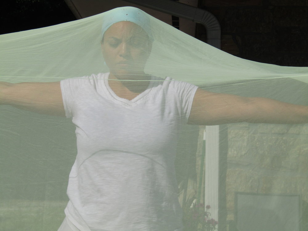 Sequences under mosquito net