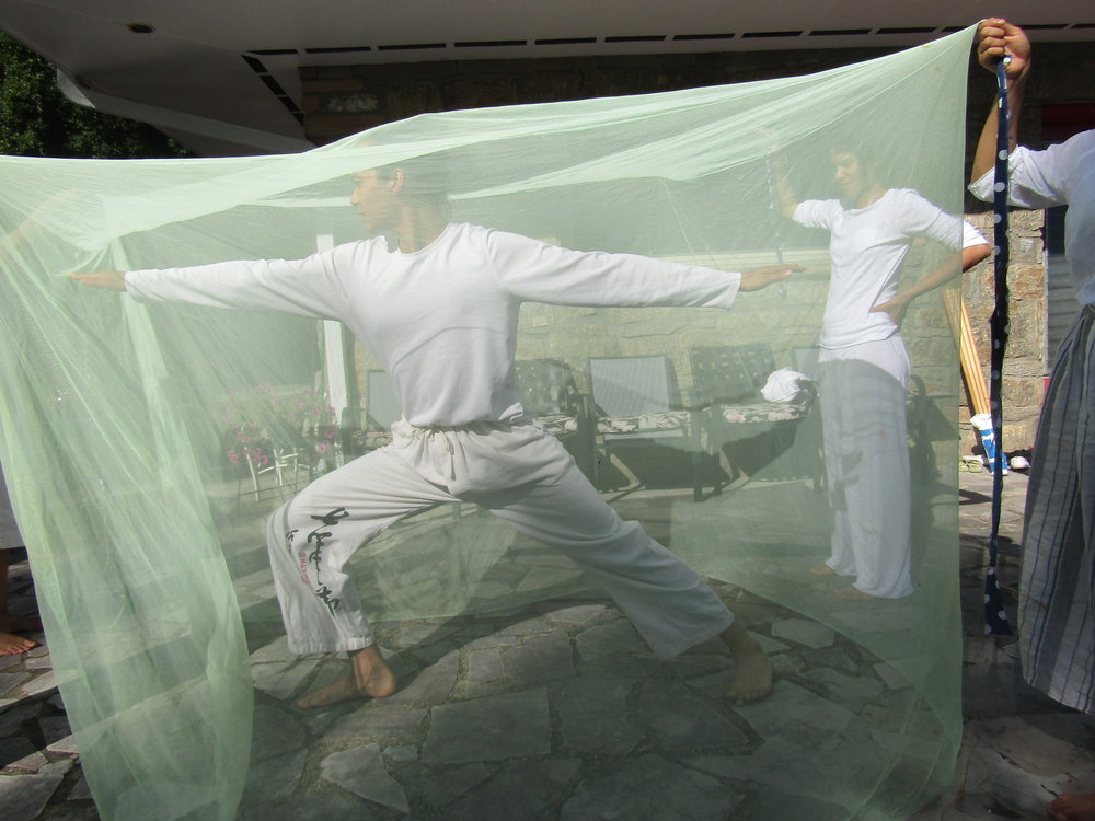 Sequences under the mosquito net