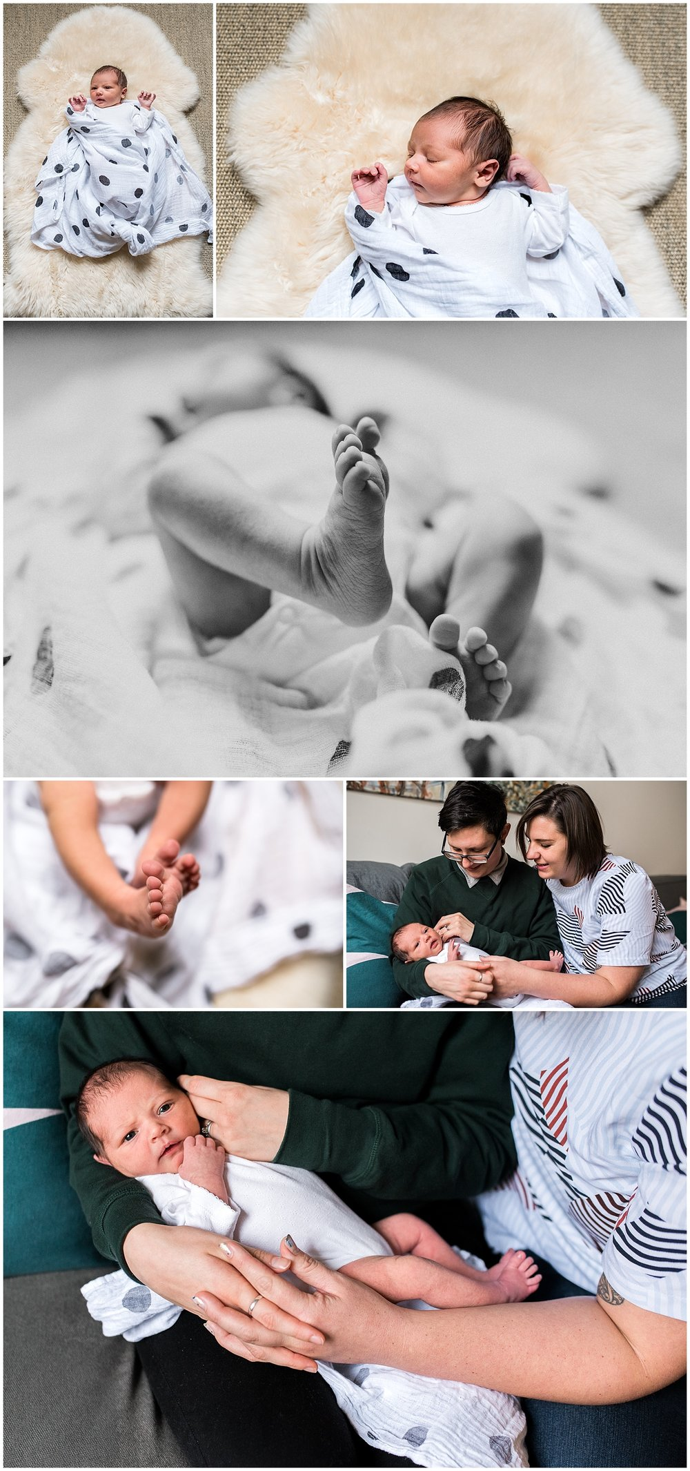 Melbourne Newborn Photographer_0151.jpg