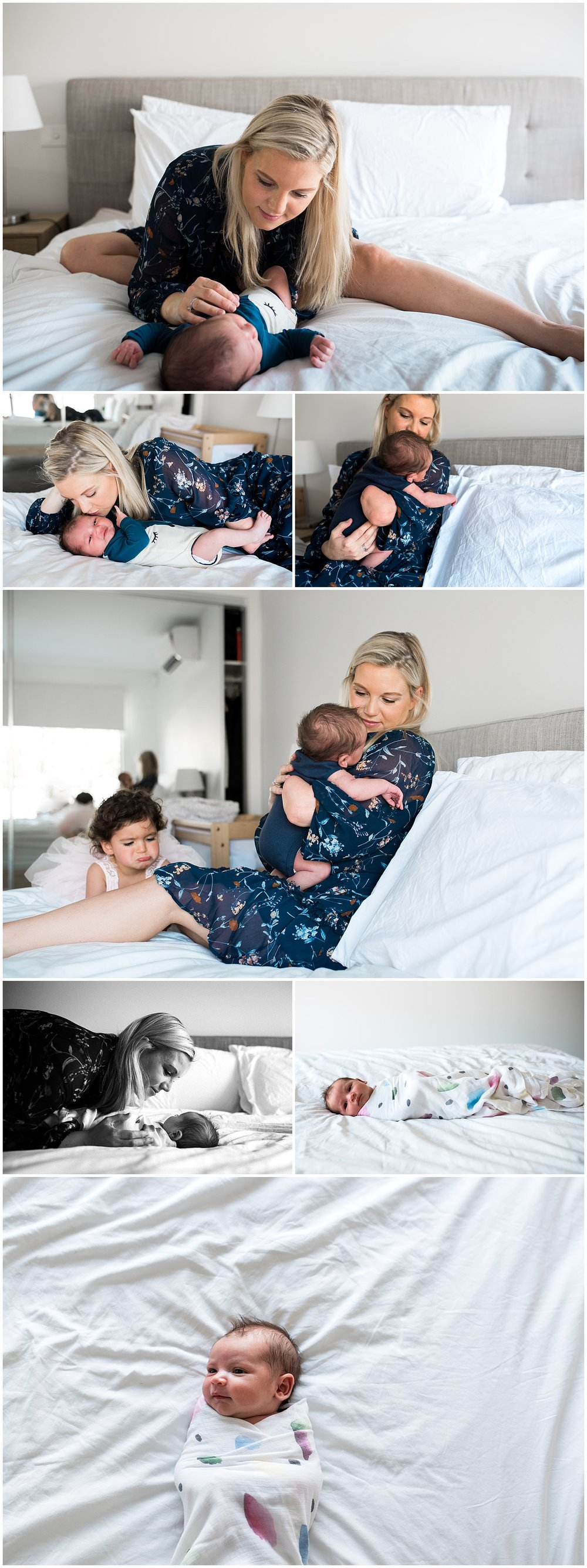 hampton melbourne newborn photographer