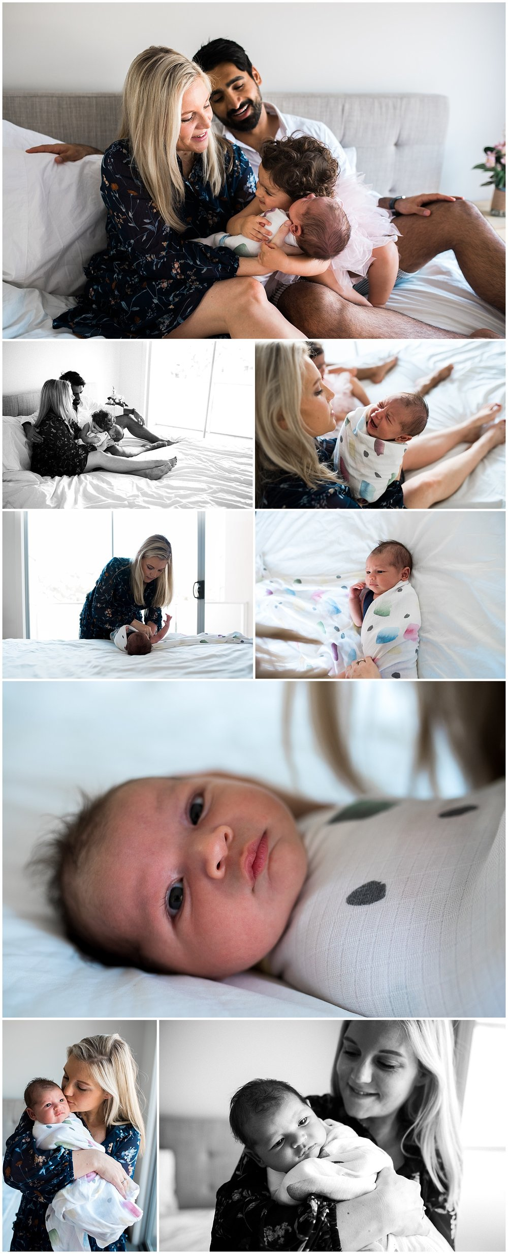 windsor newborn photographer