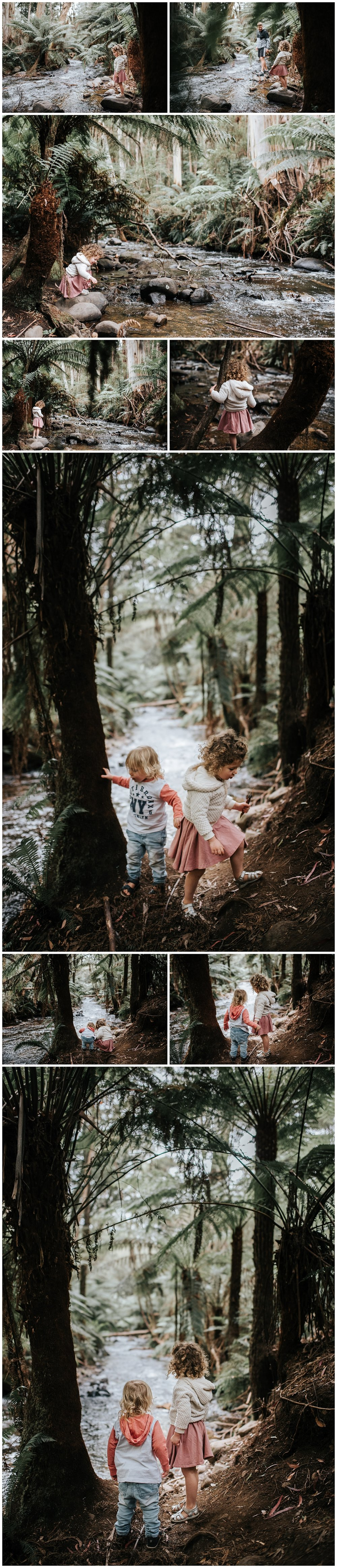 lifestyle family photographer dandenong ranges