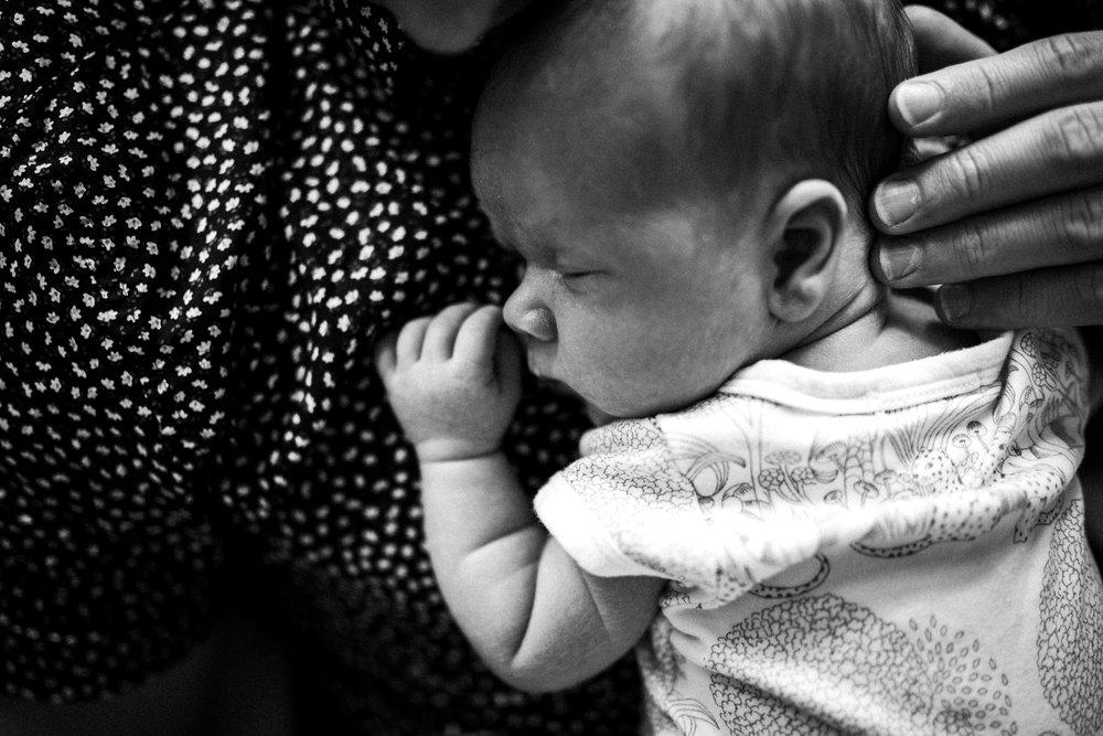 professional newborn photographer melbourne