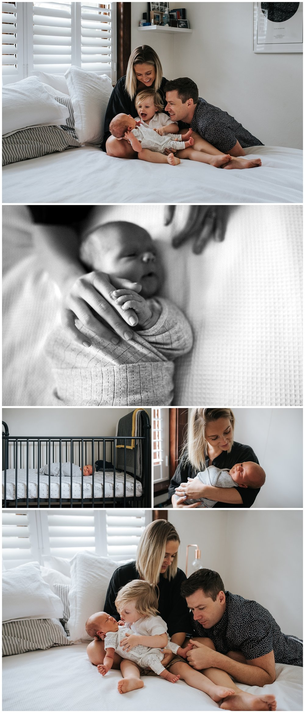 elsternwick newborn photographer