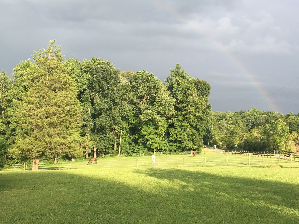front pasture with rainbow.jpg