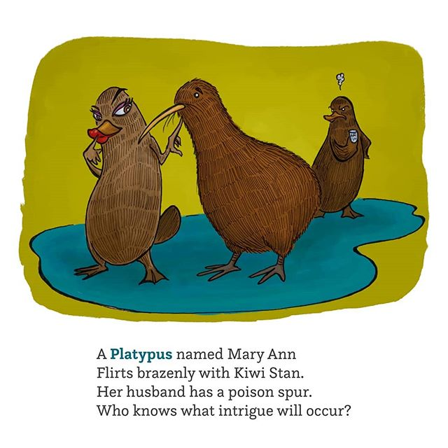 It's Tuesday, and today's letter is P, from my new book Lizards & Birds & 50-cent Words! ©2019 John McRandle  To see more things please visit the tumblr link in my profile.  #illustration #digitalart #penandink #australia #newzealand #kiwi #platypus #apteryx #monotreme #wildlife #alphabet #abc