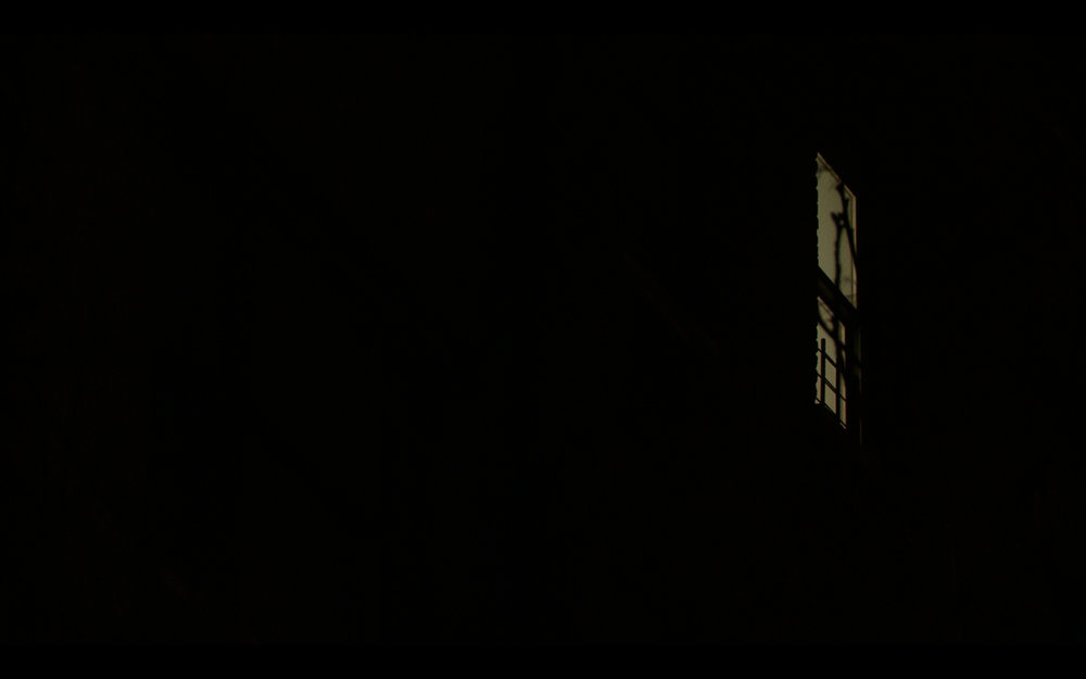 Text for Nothing, 2015. HD video with sound. Text by Samuel Beckett.