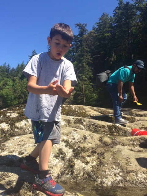 Ramone naturalizing on his tidepool field trip