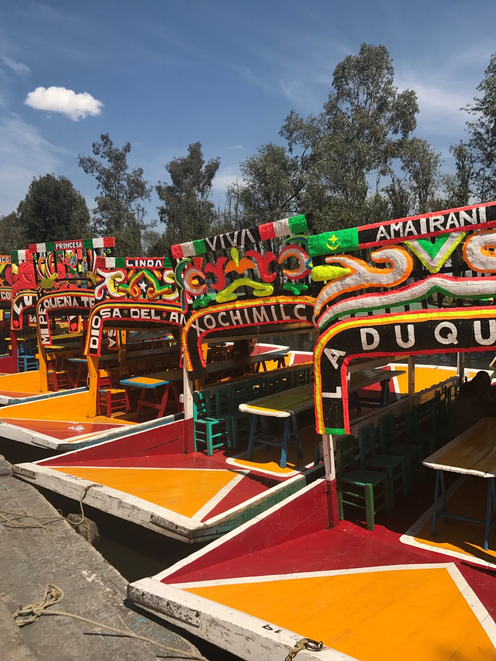 The-Remote-Experience-Work-Travel-Program-Xochimilco.jpg