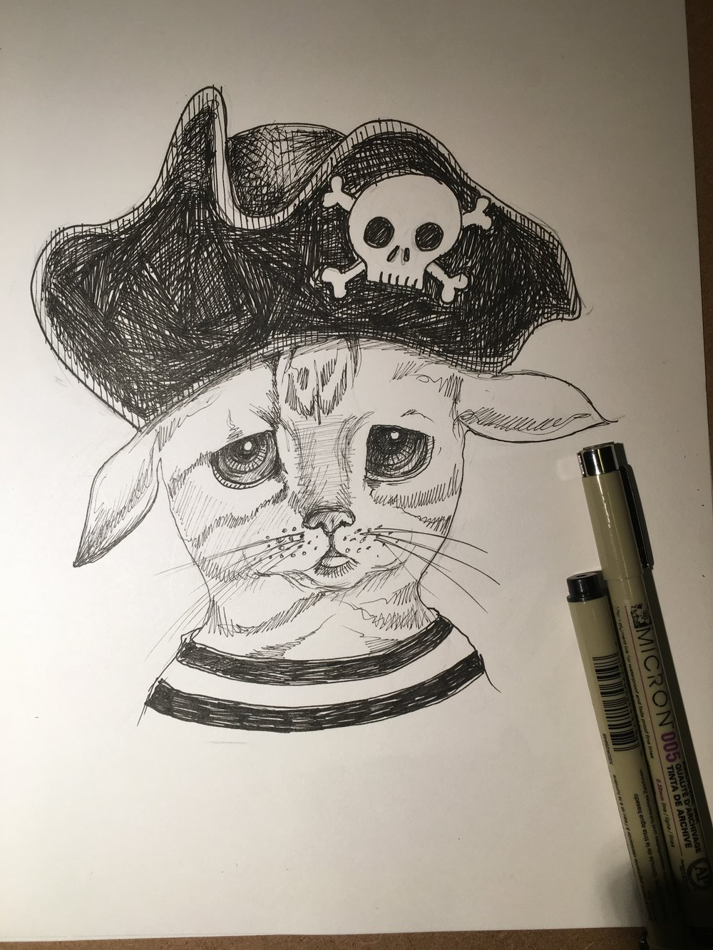 Pirate Kitty