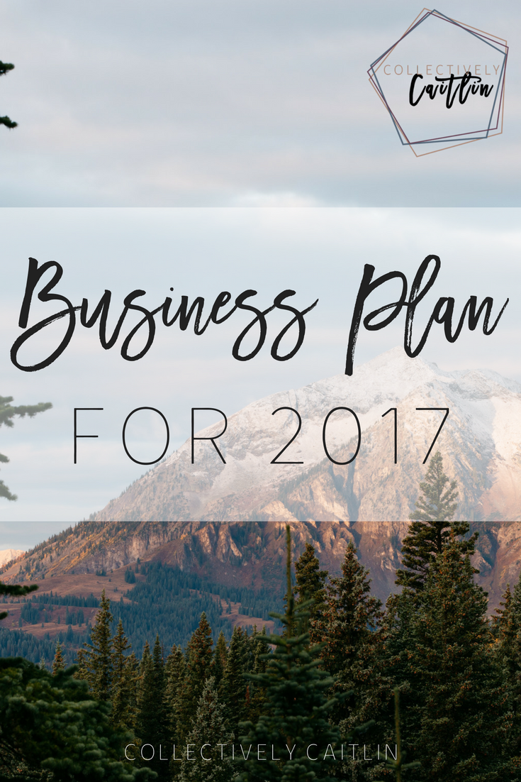 Business Plan For 2017 - Productivity and Growth Coach For Creative Entrepreneurs - Business Coach - Collectively Caitlin