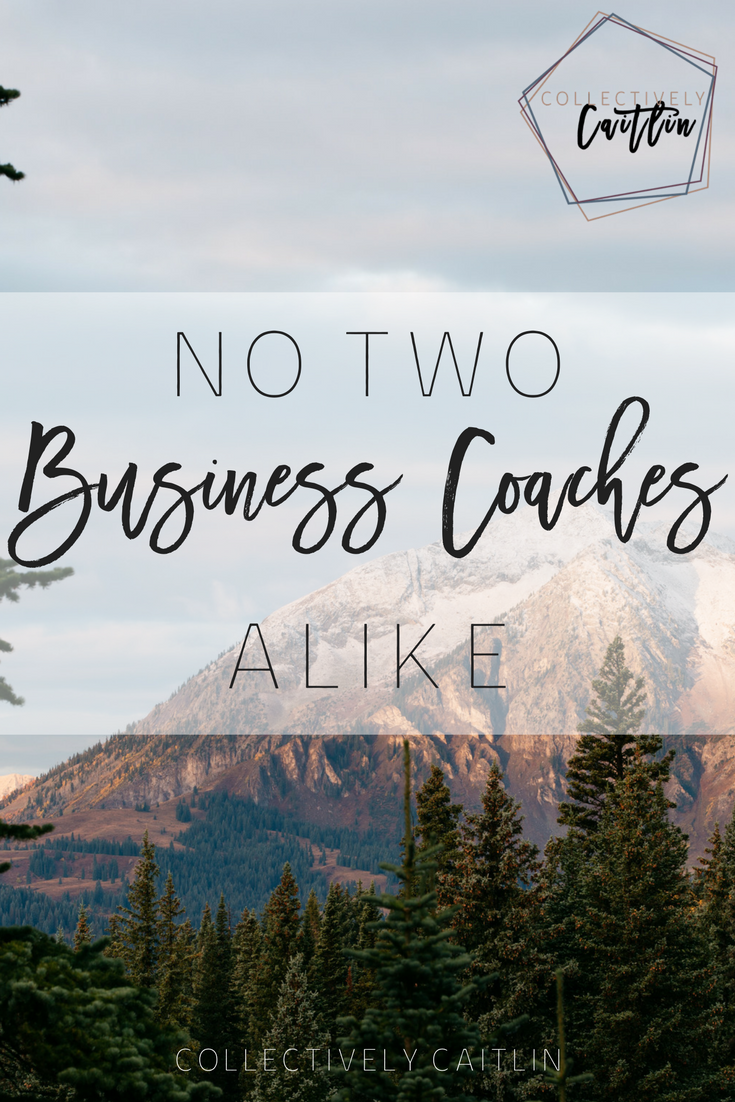 No Two Business Coaches Alike - Productivity Coach For Creative Entrepreneurs - Business Coach - Collectively Caitlin