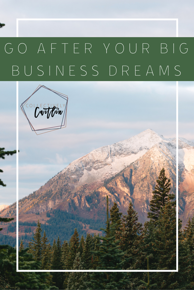 Go After Your Big Dreams - Collectively Caitlin Creative Business Coach