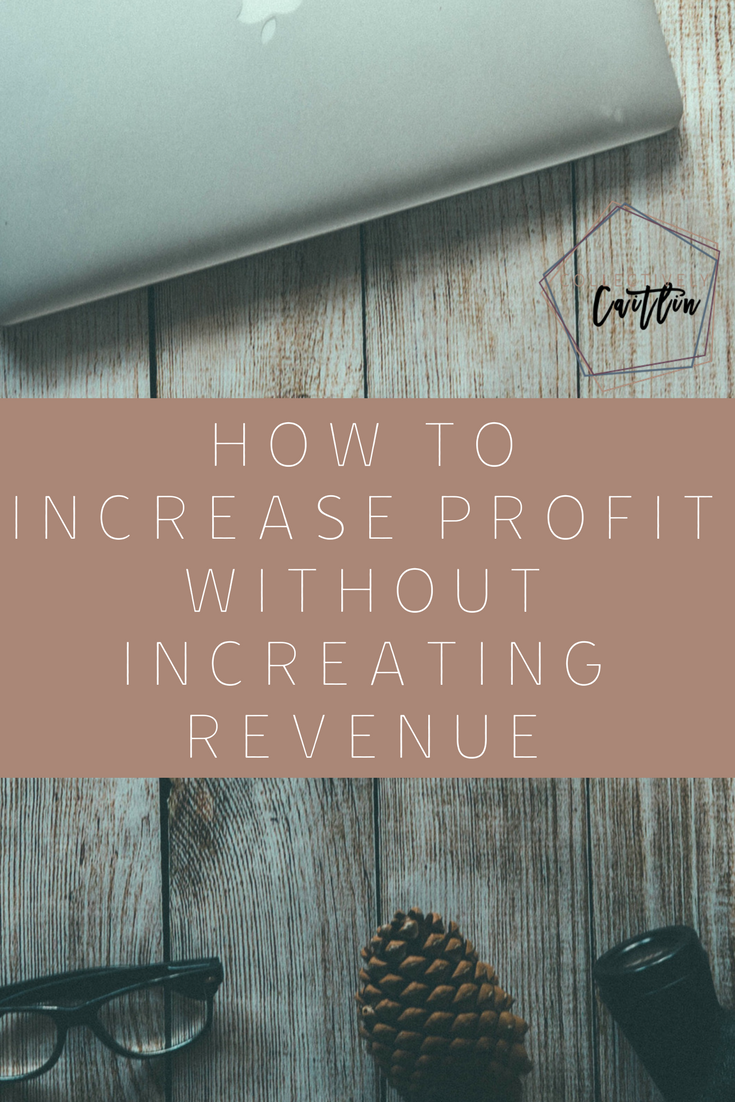 How To Increase Profit Without Increasing Revenue