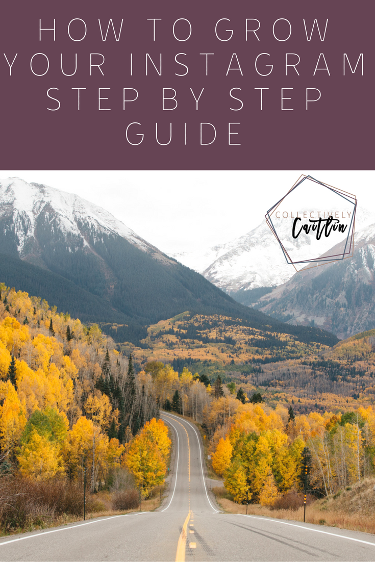 Grow Your Instagram: Step By Step Guide Collectively Caitlin