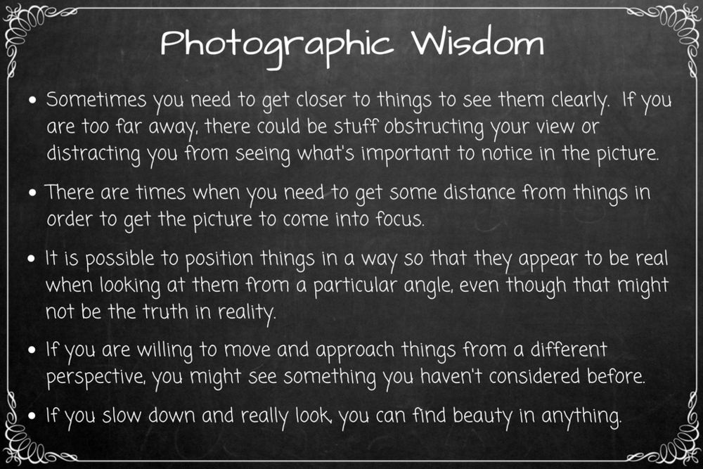Photographic Wisdom Final (5).png
