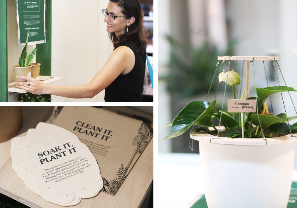 Biophilic initiatives that were applied at a local co-working space. (Top) Adopt a plant initiative (Bottom) Coasters and napkins printed with seed paper for the Grow your plant initiative (Right) Interactive potted plant to encourage interaction with nature.