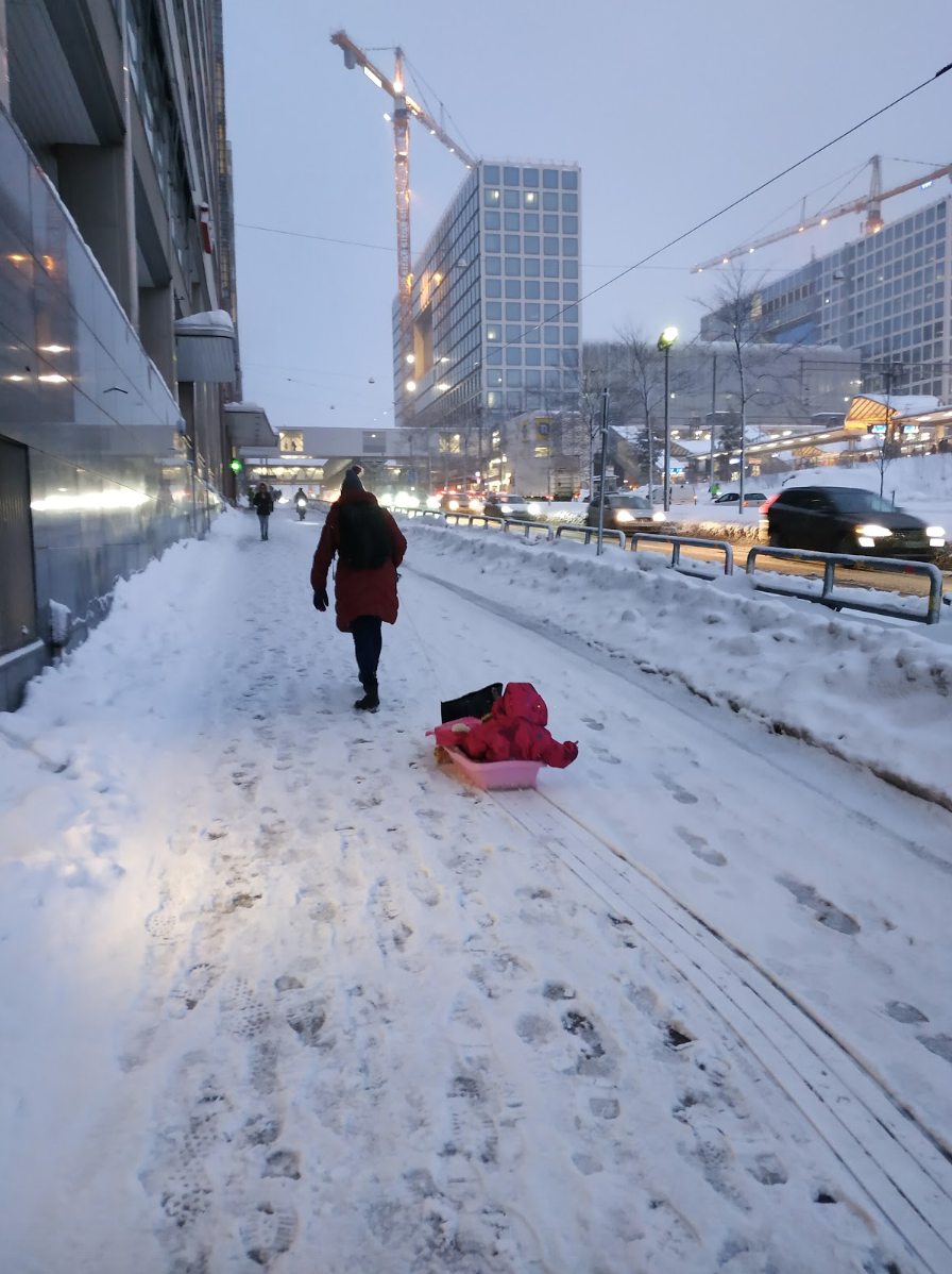 Sledges as a transportation method in the city.