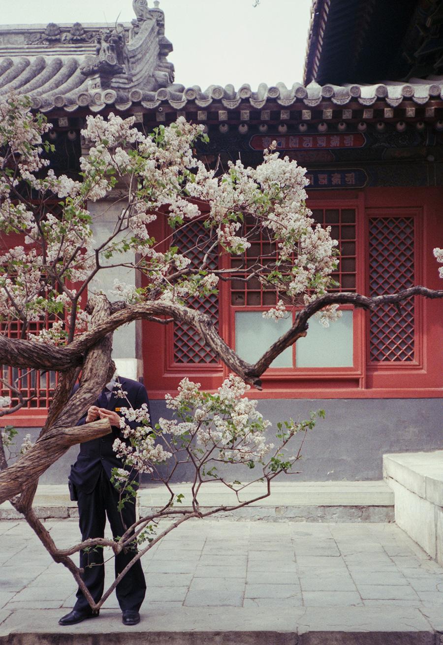 wlm_china_02.jpg