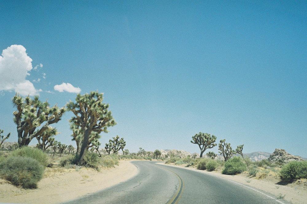 wlm_californiaroadtrip_00.2.jpg