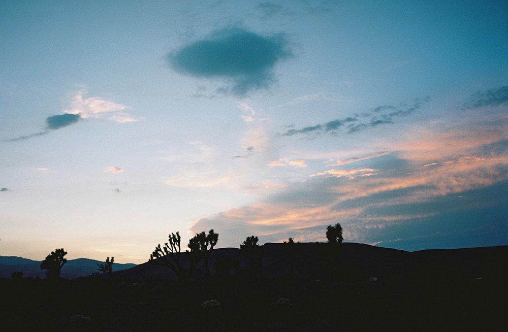 wlm_californiaroadtrip_05.jpg