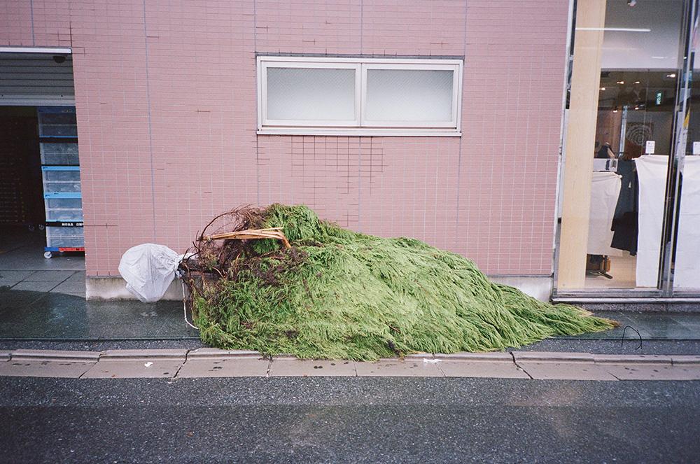 wlm_tokyo_04.jpg
