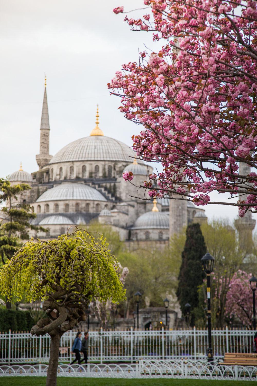 istanbul-90.jpg