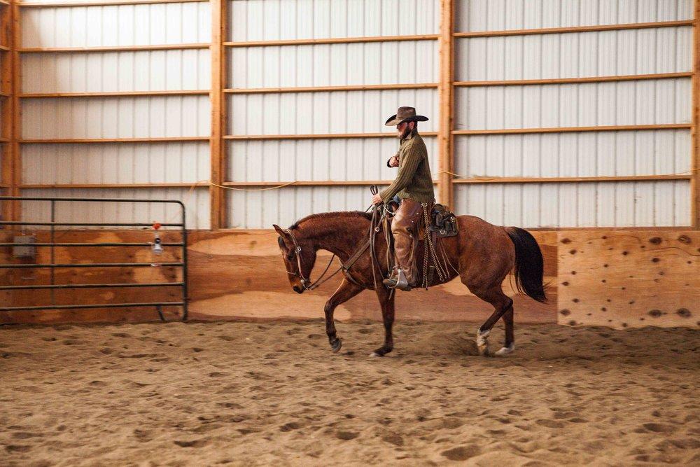 Rawhide Quarter Horses - REAL Ranch Horse Sale in Billings Montana