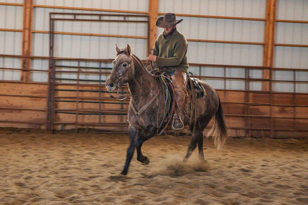 Rawhide's Dusty by Rawhide Quarter Horses