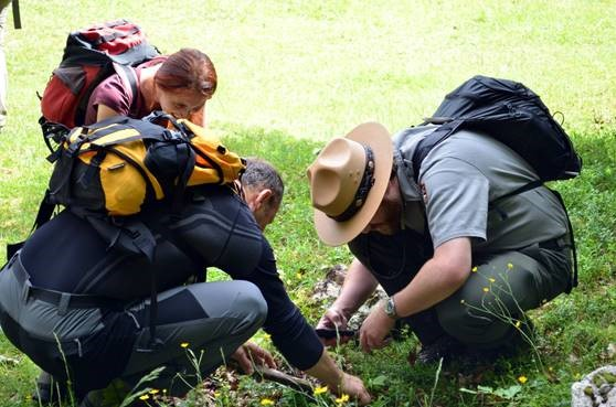 Ranger John Duwe works with local teachers to observe and record insects during the 2017 GeoBioBlitz event in Triglav National Park, Slovenia.