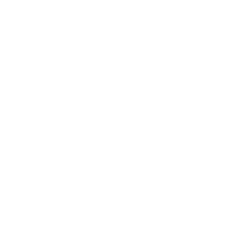 FoundationFocus_logos_white_Reverse_House.png