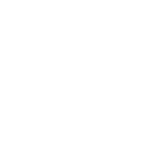 FoundationFocus_logos_white_Reverse_Church.png