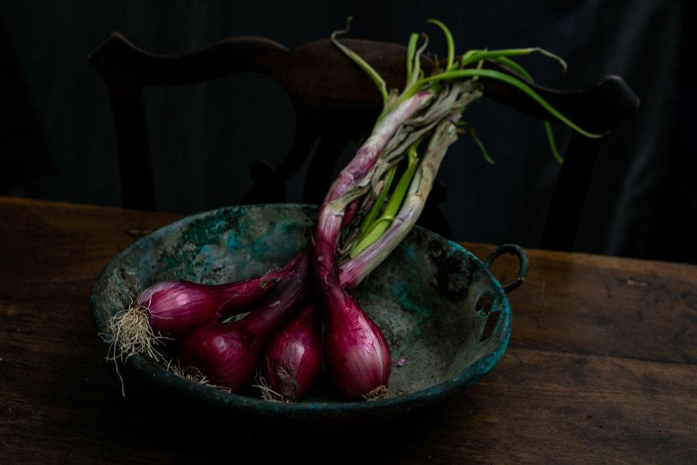 Red Onions-2.jpg