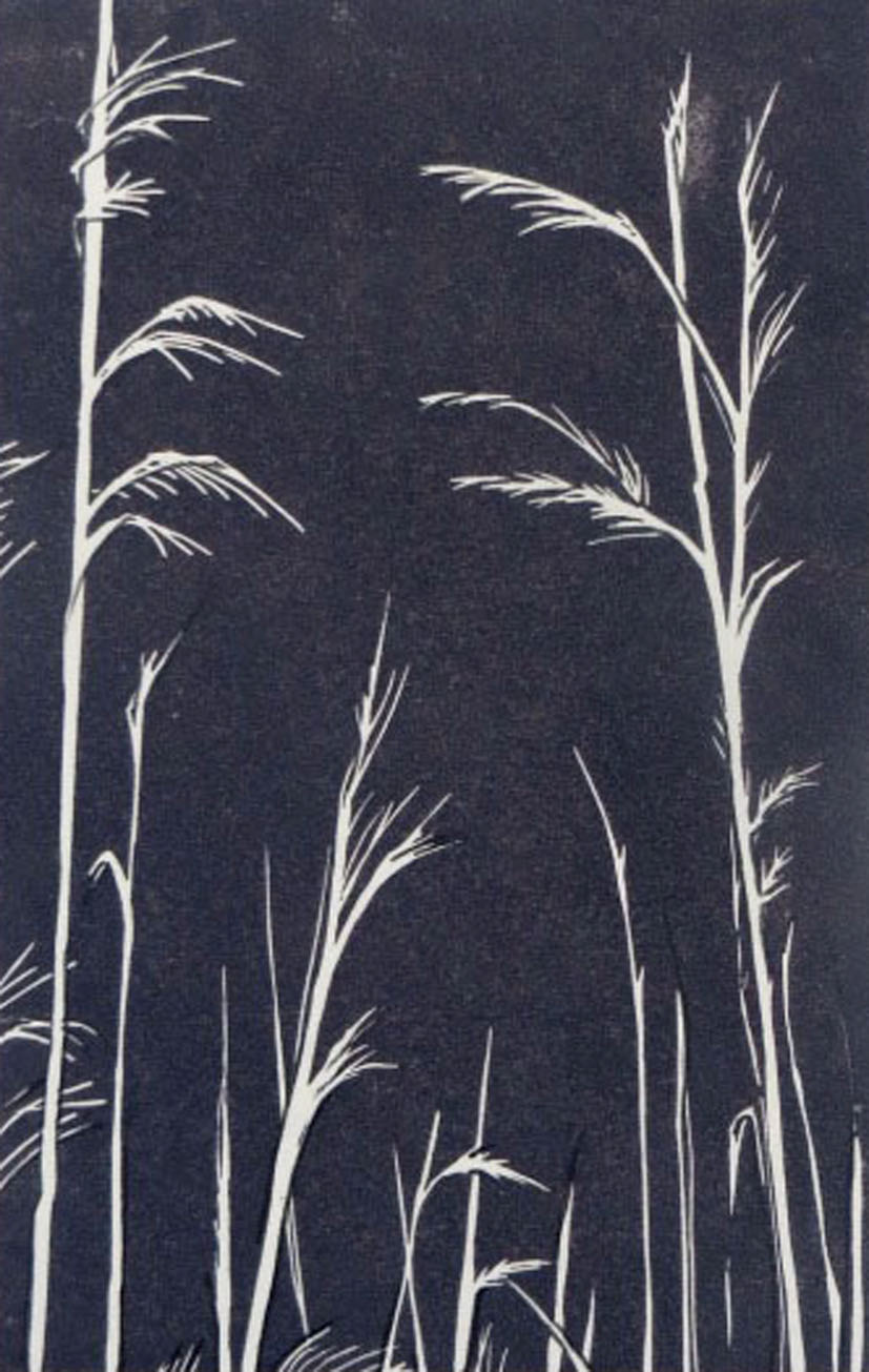 'Suffolk Grasses' in Slate limited edition linocut