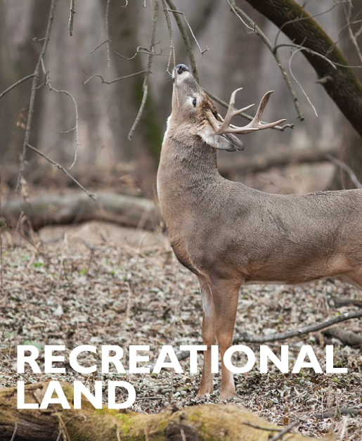 RECREATIONAL LAND