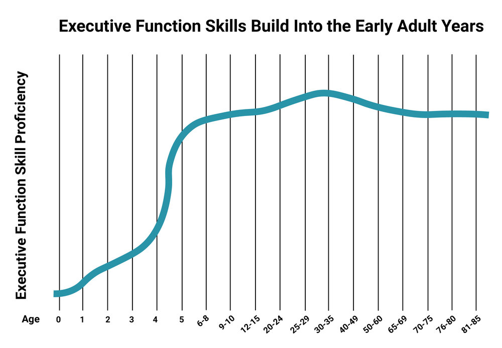 Executive Functioning Skills are built most rapidly in the first five years but continue to be built into your 20s.