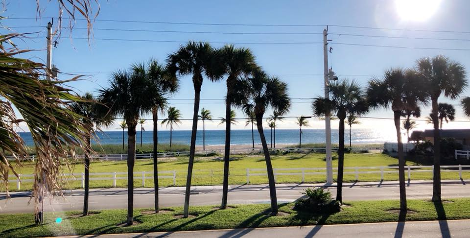 view of beach.jpg
