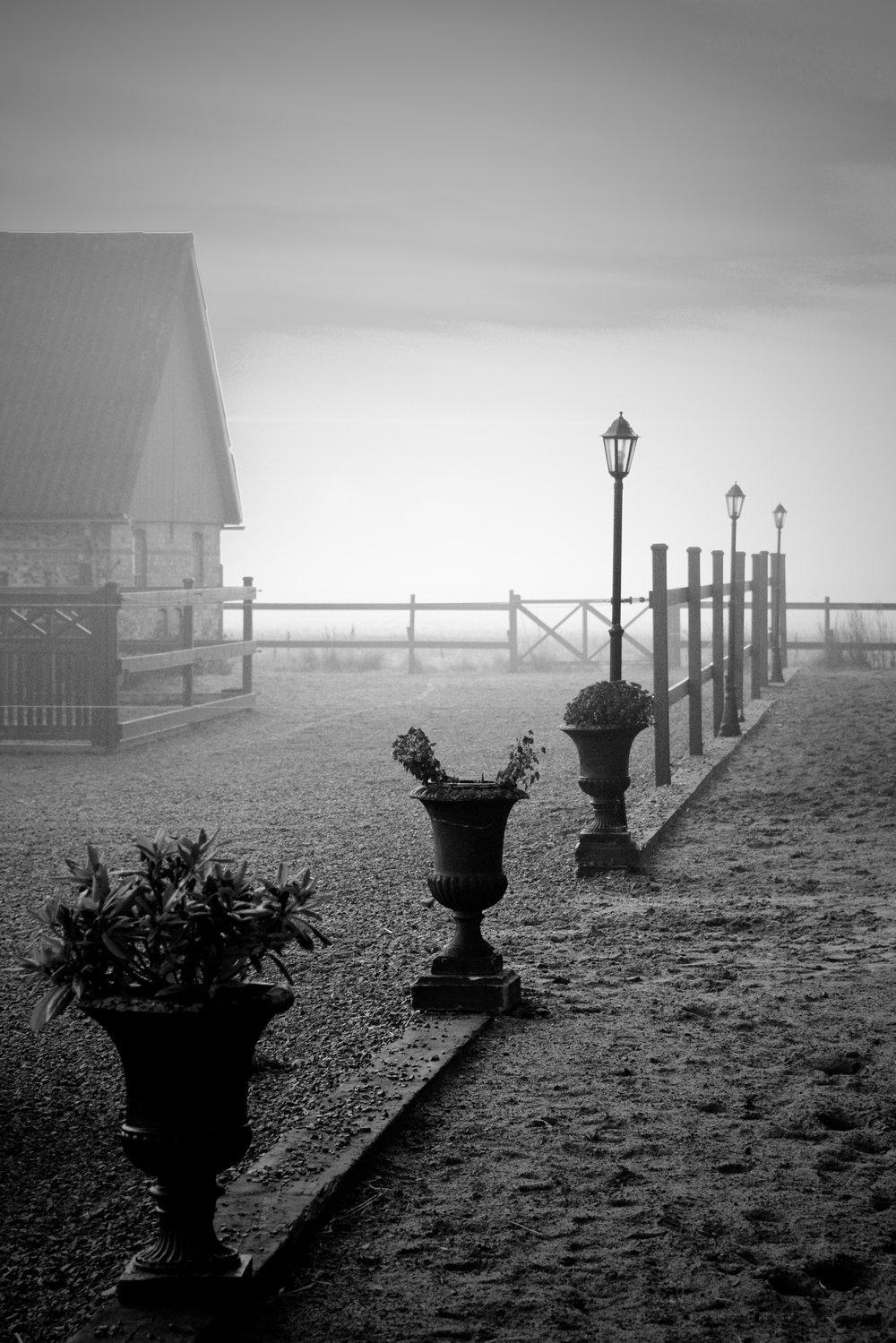 foggy vintermorgen