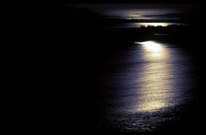 moonlight_on_water